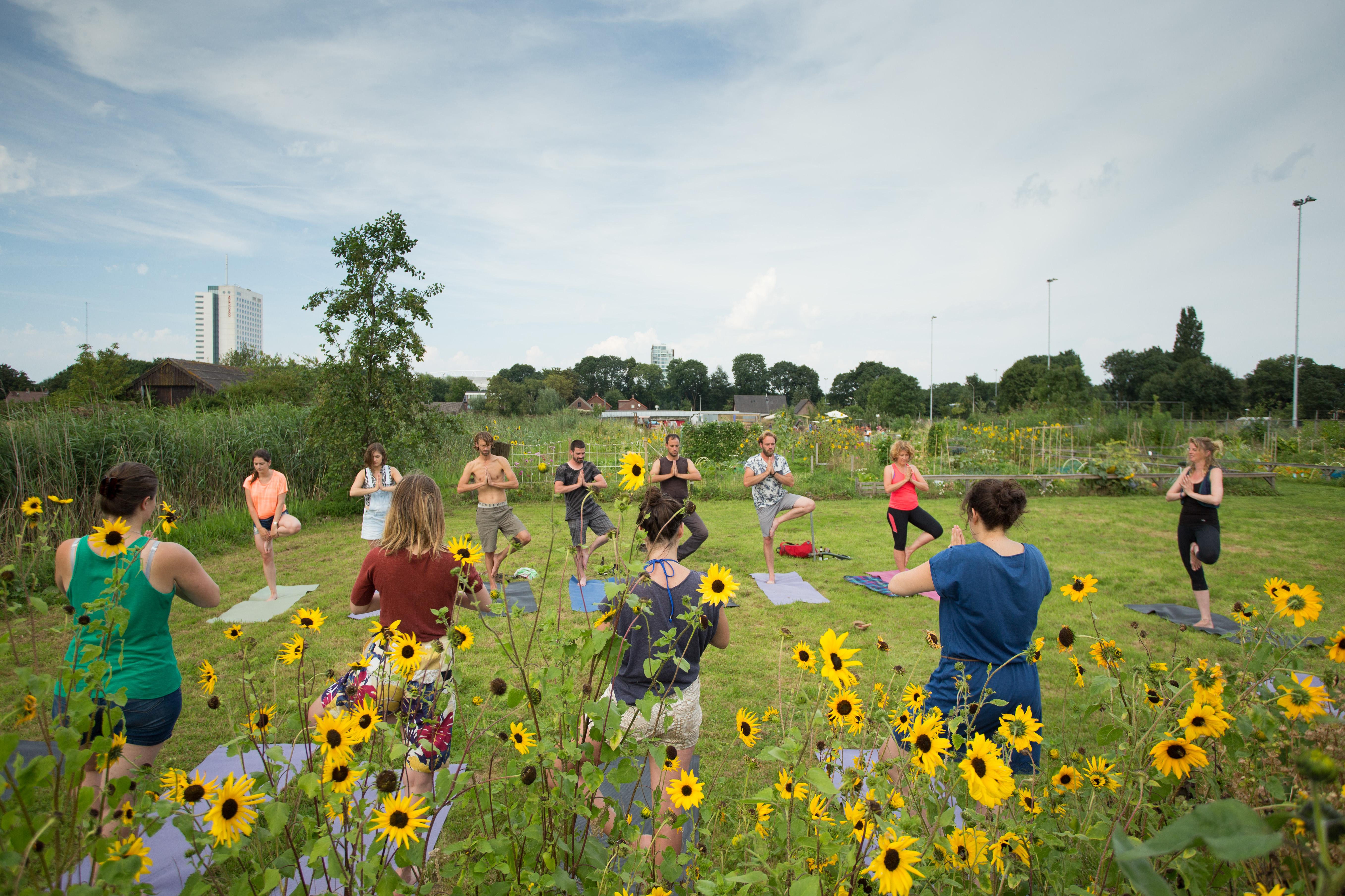 Yoga buiten koningshof